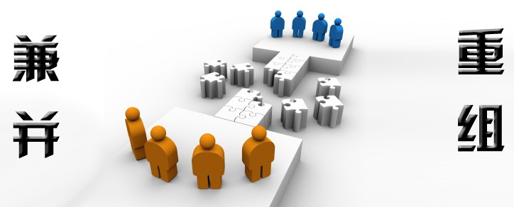 大型物流企业兼并重组咨询案例