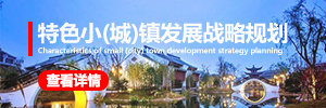 特色小镇发展战略规划专题