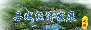 县域经济发展规划专题