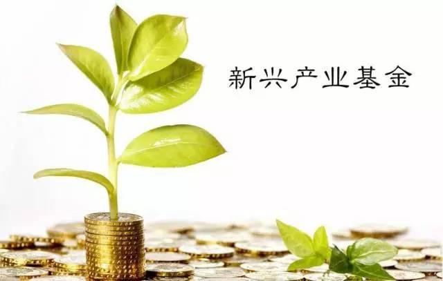 羊城企业必看:广州新兴产业发展引导基金申报指南